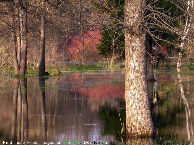 Nature Springtime Free Desktop Wallpapers For PC & Mac #41