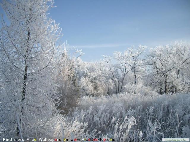 Winter Free Desktop Wallpapers For PC & Mac #146