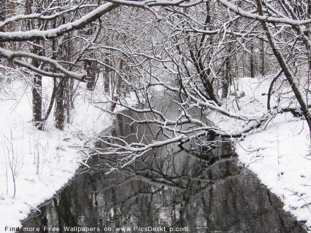 разгар зимы 2